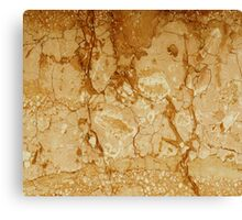 Marble Texture 16 Canvas Print