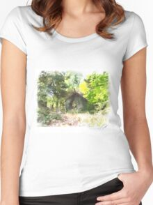 Abandoned building Women's Fitted Scoop T-Shirt