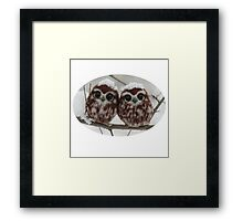 Two happy little owls Framed Print