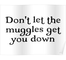HP - Don't let the muggles get you down Poster