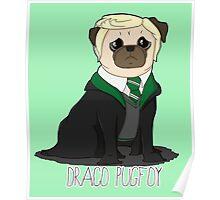 Draco Pugfoy! Poster