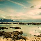 Table Mountain 1 by fortheloveofit
