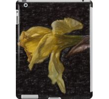 Beauty At The End iPad Case/Skin