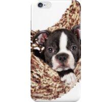 Boston Baby iPhone Case/Skin