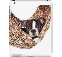 Boston Baby iPad Case/Skin