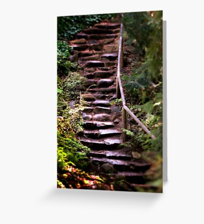 Old Wet Stone Steps Greeting Card