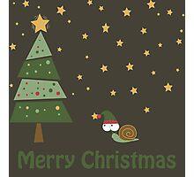 Snail Christmas Scene Photographic Print