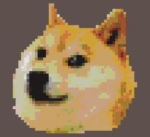 8-bit Doge Head by evanmayer