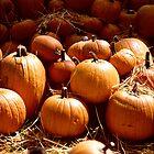 Pumpkin Patch by Bill Wetmore