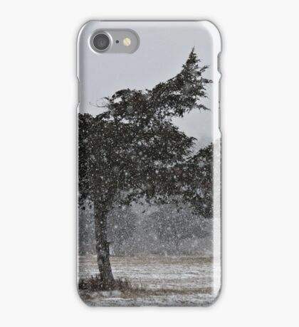 Snow Squall  iPhone Case/Skin