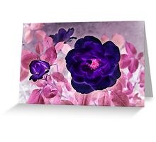I Dream of Purple Roses... Greeting Card