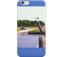 Tri-Colored Heron iPhone Case/Skin
