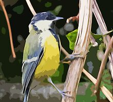 "Birds story, "" fawn paint Picasso ! "" 6 (c) (h) the Blue Tit - Olao-Olavia by Okaio Créations by okaio caillaud olivier"