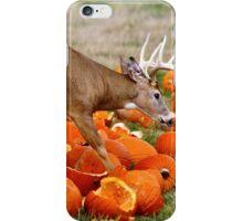 Deer and pumpkins iPhone Case/Skin