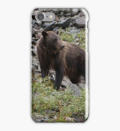 Kodiak iPhone Case/Skin
