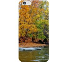 The Rainbow Effect iPhone Case/Skin