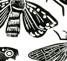 Insect Collection Lino Prints Sticker