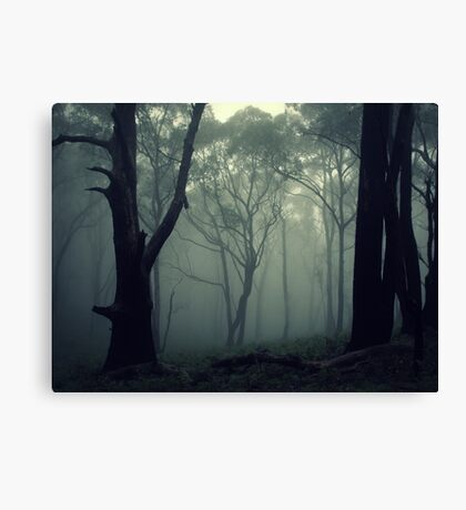 Tread Lightly And Carry A Big Stick Canvas Print
