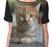 Little orange kitten outdoors. Chiffon Top