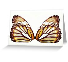 Monarch Madness Greeting Card