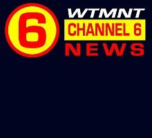 Channel 6 News by hordak87