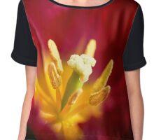 Passionate Red Tulip Chiffon Top