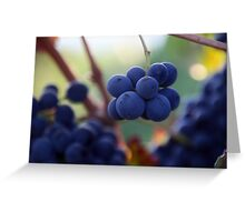 Little Purple Bunches Greeting Card