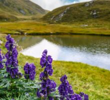 Mountain flowers by a glacial lake Sticker
