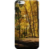 Path thru the woods...near Cripple Creek, Colorado iPhone Case/Skin