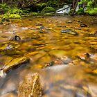 Flowing Water by Joel Bramley