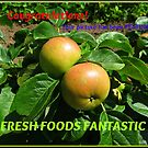 Fresh Foods Fantastic Banner by BlueMoonRose