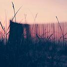 beach sunset II by Ingrid Beddoes