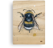 Bee #2 Canvas Print