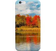 Reason I love Autumn... iPhone Case/Skin