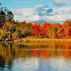Reason I love Autumn... by Poete100