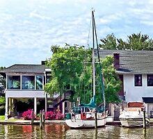 Alexandria VA - Docked Boats by Susan Savad