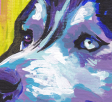 Siberian Husky Bright colorful pop dog art Sticker