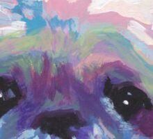 Shih Tzu Bright colorful pop dog art Sticker