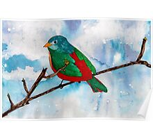 Bright Bird Poster