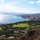 Atop Diamond Head: Oahu, Hawai'i by Sally Kate Yeoman