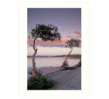 Maroochy River at dawn. Sunshine Coast. Queensland. Art Print