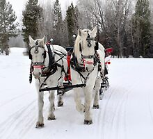 Sleigh Ride by Danny Key