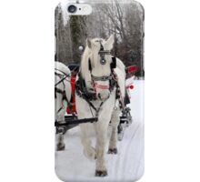 Sleigh Ride iPhone Case/Skin