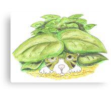 Kitten hiding in bushes Canvas Print