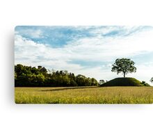 the sun goes down behind a lonely tree Canvas Print