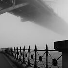 Sydney Harbour Mist by Sue Wickham
