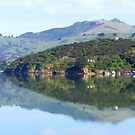 Reflections from Akaroa by Lissie EJ