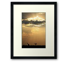 Giraffe Background - Sky Light Wanderer Framed Print