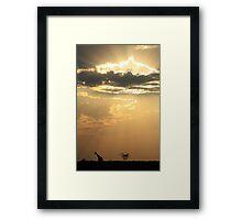 Giraffe Background - Sky Light Wanderer Framed Print
