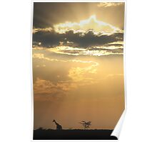 Giraffe Background - Sky Light Wanderer Poster